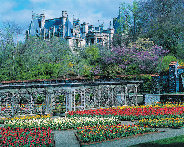 biltmore_estate_garden