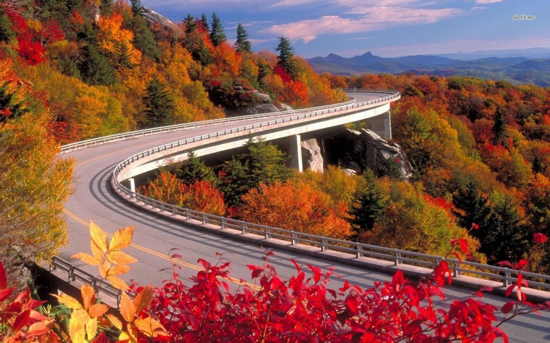 blue-ridge-parkway-in-fall