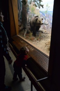 Reid Looks In Wonder At The Bears