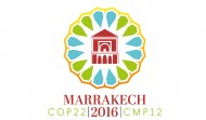 COP22 & sustainable development
